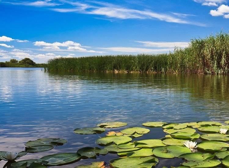 Delta Dunarii - toate